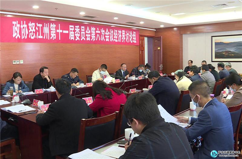 出席怒江州政协十一届六次会议的驻泸水州政协委员认真讨论常委会和提案工作报告
